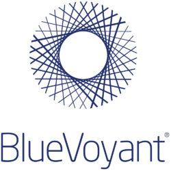BlueVoyant main logo stacked
